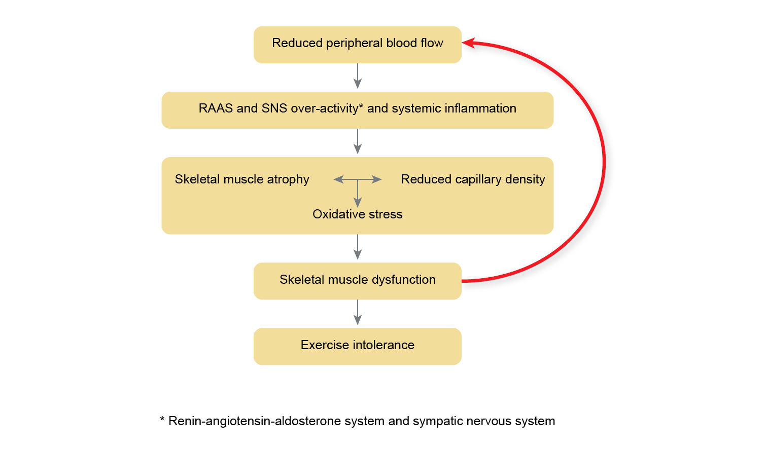 Skeletal muscle dysfunction diagram